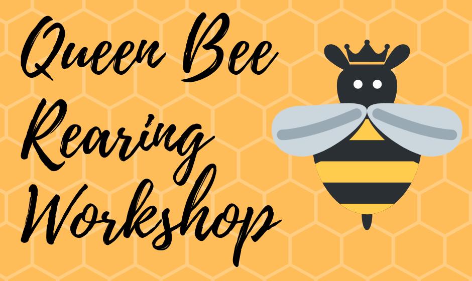 Queen Bee Rearing Workshop Banner Image